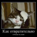 Как отвратительно в России по утрам