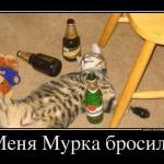 Пьяный кот