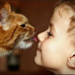 Ребёнок и кот